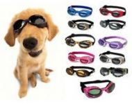 Puppy Love Dog Goggles