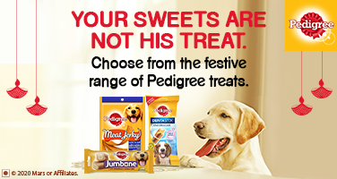 Pedigree Treats