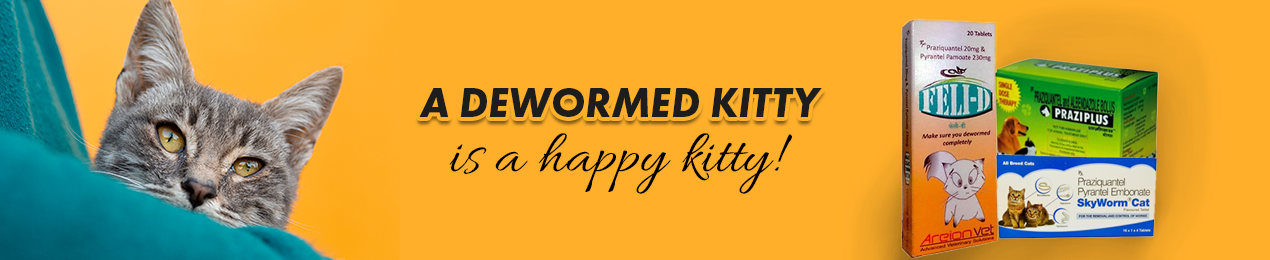 Dewormers for Cats