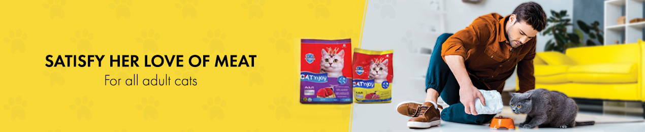cat food for all adults