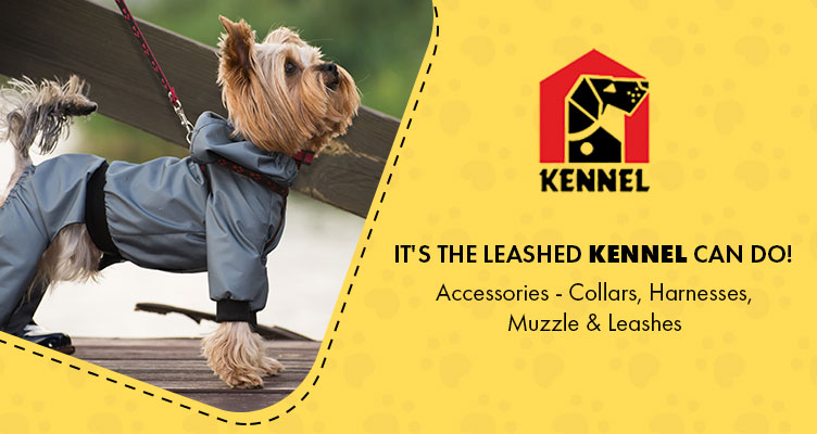 kennel accessories